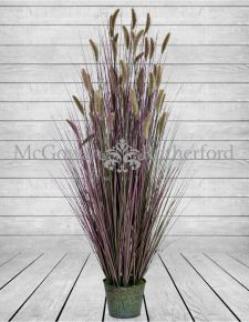 Ornamental Grasses in Galvanised Pot - Style 6