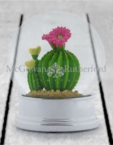Decorative Cactus Snow Globe