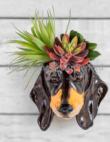 Ceramic Dachshund Head Wall Sconce Vase