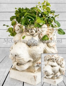 Large Rustic Stone Effect Lion Head Planter