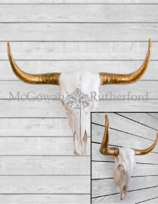 Extra Large Bison Wall Skull with Gold Horns
