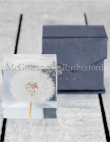 Square Acrylic Glass Real Dandelion Paperweight with Gift Box