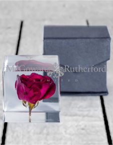 Square Acrylic Glass Real Rose Paperweight with Gift Box