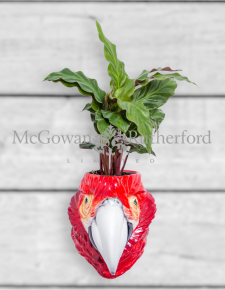 Ceramic Red Macaw/Parrot Head Wall Sconce Vase