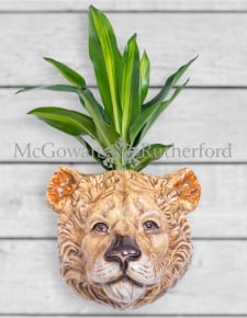 Ceramic Lioness Head Wall Sconce Vase