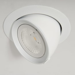 AR111 Halogen Scoop Downlight White