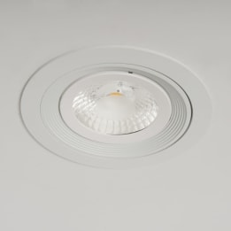 AR111 Halogen Downlight White
