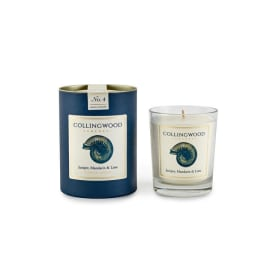 Luxury Candle - Juniper, Mandarin & Lime/Shell