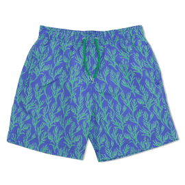 Men's Swim Shorts  - Seaweed Blue/Green