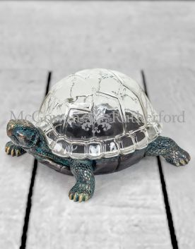 Antiqued Bronze Effect Tortoise with Glass Shell Display Box