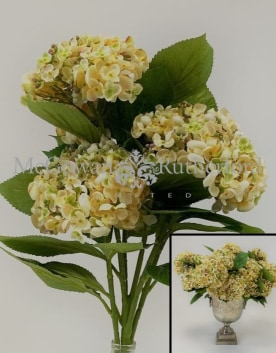 Ornamental Green Hydrangea 5 Flower Stem