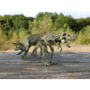 Dinosaur Excavation Set - display sample (set of 2)