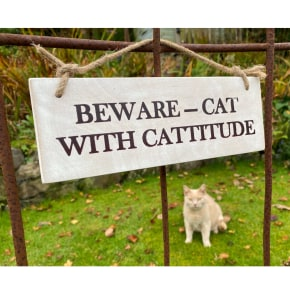 Garden Sign - Cat with Cattitude NEW