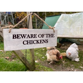 Garden Sign - Beware of the Chickens NEW