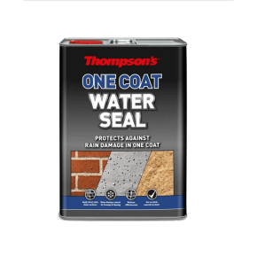 Thompson's One Coat Water Seal Clear 5L