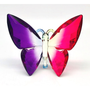 Supernova Colour Butterfly