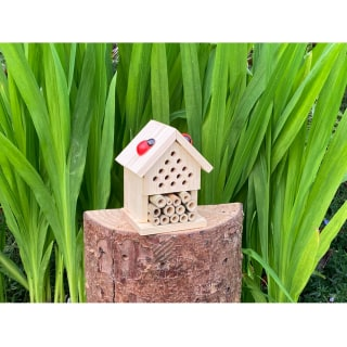 Make Your Own Insect House