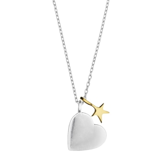 Two Tone Heart & Star Necklace