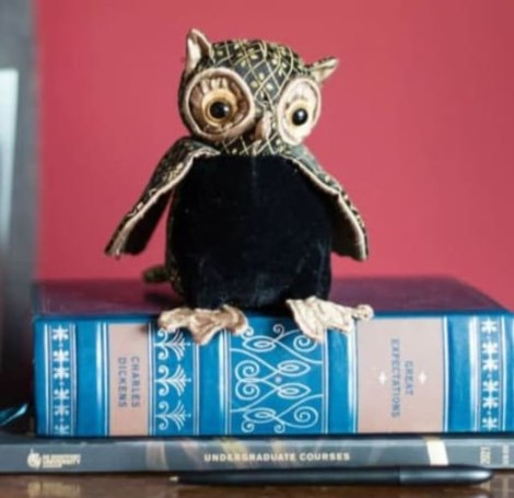 Lord Oliver Wise Junior Owl Paperweight