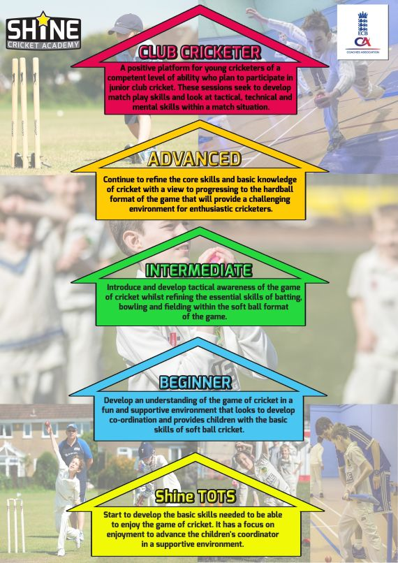 Cricket Progression Chart