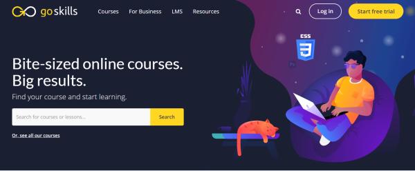 Employee Training Platform - GoSkills