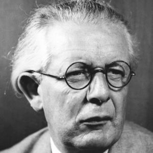 cognitive learning theory piaget