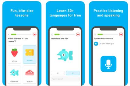 Free Online Learning App - Duolingo