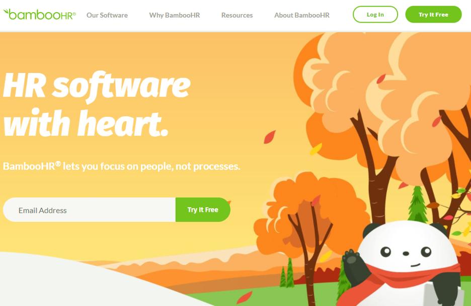 Bamboo HR Web Hr Software