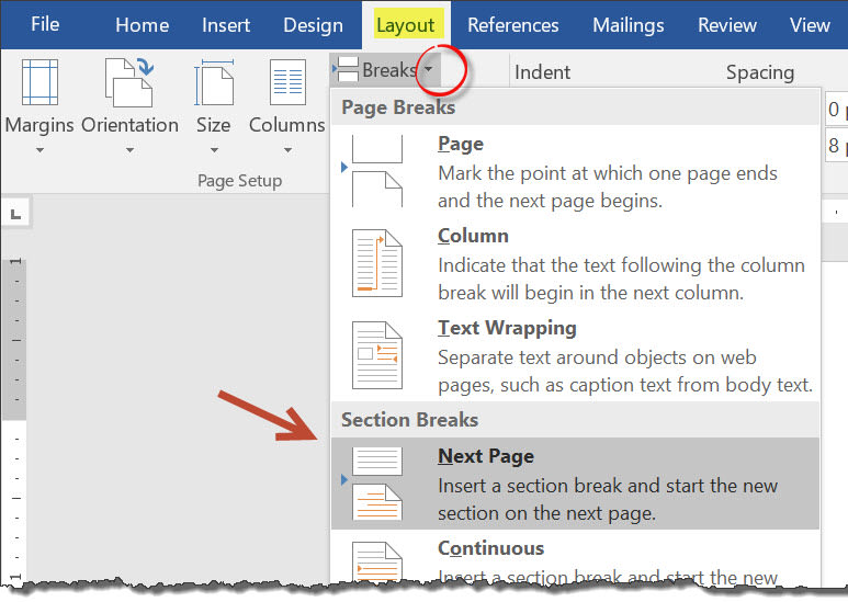Image: showing the insert page break dialog in Microsoft Word