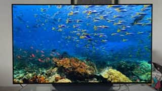 LG C1 OLED TV review