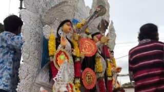 Bijoya Doshomi: দেবীর এবার দোলায় গমন, তার ফল মড়ক! জানুন, বিজয়া দশমীর তাৎপর্য