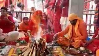 Durga Puja 2021 : অষ্টমীতে মহাযজ্ঞ, মা তারাই দুর্গারূপে পূজিত হয় তারাপীঠে
