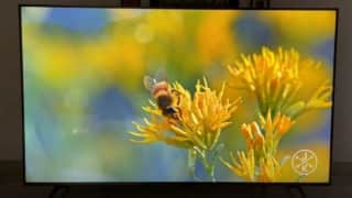 Sony X85J TV review