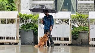 Taj employee shares umbrella with a stray dog, Ratan Tata welcomes gesture