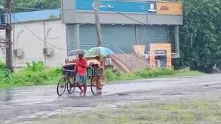 Bengal Weather Update: আজ থেকে বৃষ্টি বাড়ছে দক্ষিণবঙ্গে, সঙ্গে বইবে ঝোড়ো হাওয়া