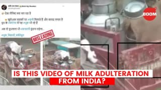 Is this video of milk adulteration from India?   BOOM   Fact Check
