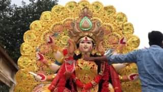 Bijaya Dashami: সকাল থেকেই বিসর্জনের সুর, চোখের জলে মা দুর্গাকে বিদায় জানানোর পালা