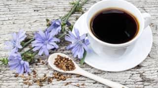 Chicory Coffee: Are you ready to replace your cuppa' joe with this?