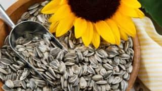 Benefits of Sunflower seeds: जानिये सूरजमुखी के बीज क्यों हैं एक बेहतरीन स्नैक ऑप्शन