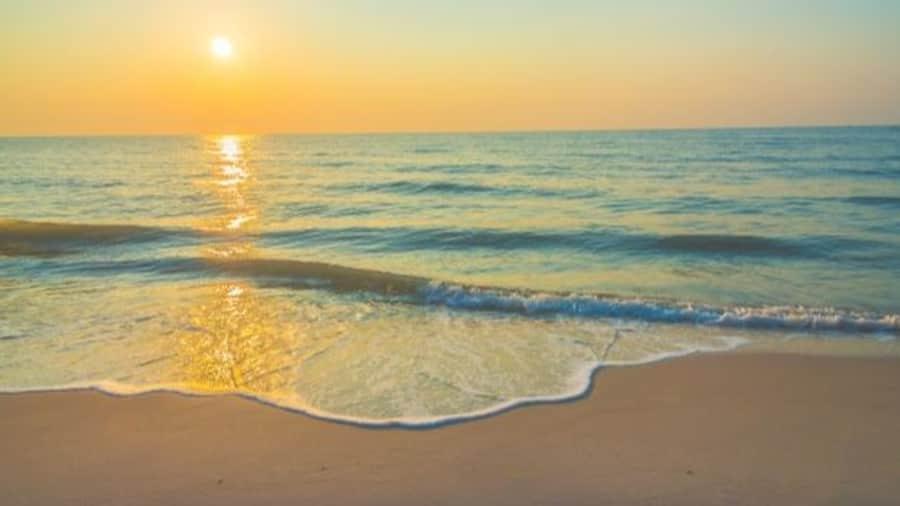 Blue Flag Beach In India: भारत के दो और समुद्री तटों को मिला दुनिया का सबसे प्रतिष्ठित सर्टिफिकेट
