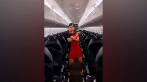 Watch: Air hostess dances her heart out on iconic 'Urvashi Urvashi' song, goes viral