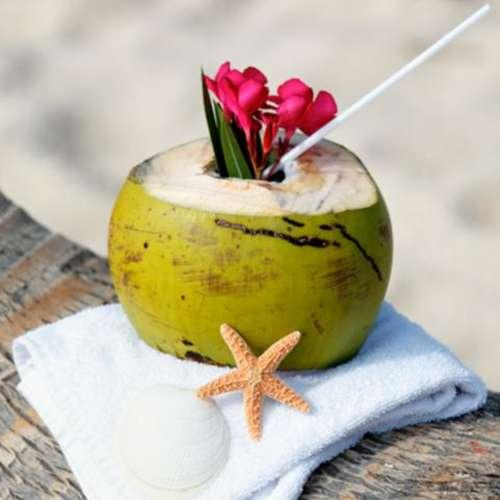 Coconut water benefits: रोज़ाना पिएं एक नारियल पानी, स्वास्थ्य के लिए है बेहद फायदेमंद