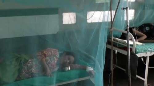 MP: कोरोना के बीच अब डेंगू ने पसारा पैर, जबलपुर में 14 दिनों में 177 केस... कूलर पर रोक
