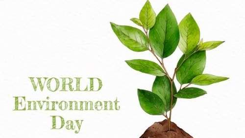 World Environment Day 2021: 'Ecosystem Restoration'