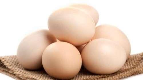 जानिये क्यों अंडे की हर डिश का स्वाद होता है अलग, मसाले नहीं है वजह