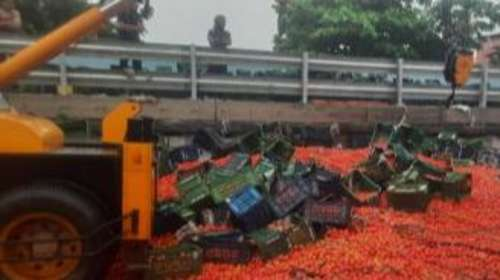 Watch: Earthmover clears tonnes of tomatoes from Mumbai highway