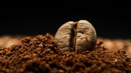 Why the cold weather is making your coffee more expensive? Coffee prices up 60%