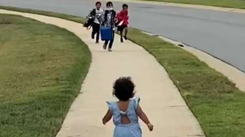 'The joy we all need today': viral video of toddlers melts hearts