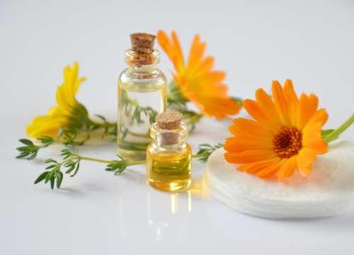 Essentials in essential oils