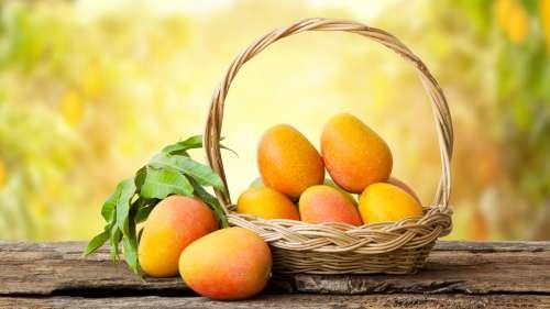 National Mango Day: आम की ये वैरायटीज़ हैं बेहद ख़ास, जानिये इनकी खासियत